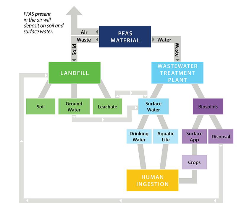 The PFAS Primer   GES